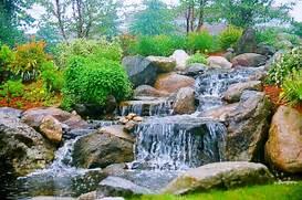 Water Garden Dana Landscaping Water Gardens