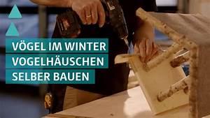 Rasenkehrmaschine Selber Bauen : do it yourself so baut ihr ein vogelh uschen selbst ~ Watch28wear.com Haus und Dekorationen