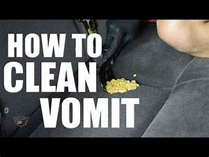 Cleaning up vomit on carpet meze blog for How to clean vomit from floor