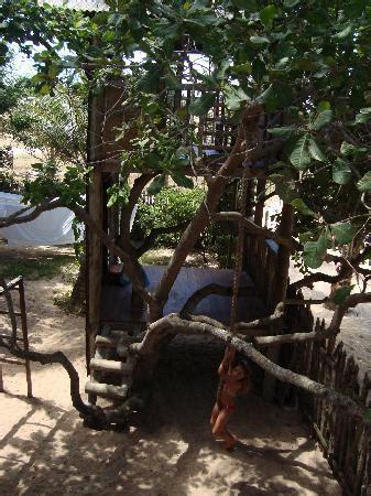 maison dans les arbres picture of pousada vila bela vista jericoacoara tripadvisor