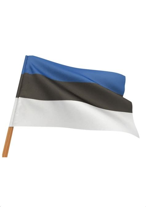 100kingitust kingipood - Estonian flag for displaying on ...