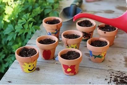 Pots Flower Pot Decorate Seeds Terra Cotta