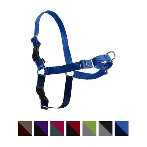 easy walk harness petsafe easy walk dog harness royal blue navy petite small chewy com