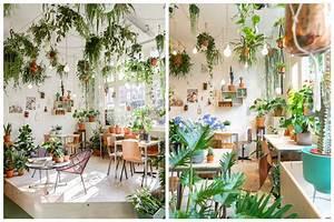 14 idees pour decorer sa maison avec des plantes vertes With affiche chambre bébé avec plantes vertes a fleurs