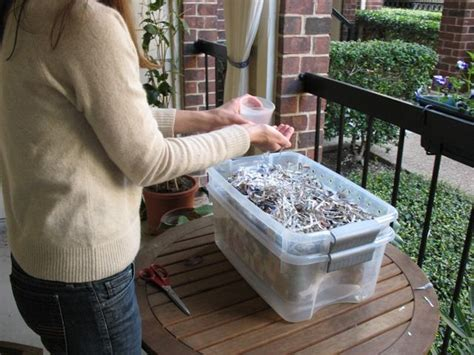 compost cuisine 17 best ideas about composting bins on compost