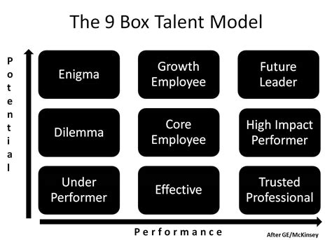 guide  box leadership competency model