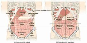 Abdominal Pain  Right  Left  Upper  Lower  Diffuse  Sharp