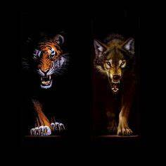 Are you a Wolf ... Wolf Vs Tiger Quotes