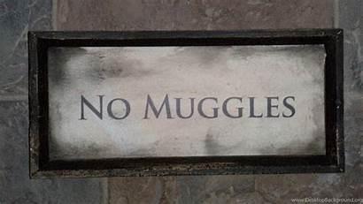 Hallows Deathly Desktop Symbol Potter Harry