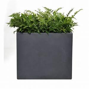 Bac A Fleur Muret : bac muret geneve gris vendu par botanic 2334204 ~ Teatrodelosmanantiales.com Idées de Décoration