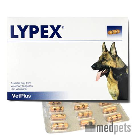 lypex tabletten fuer hund katze bestellen