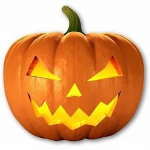 Halloween Kürbis Motive : gro er halloween k rbis aus sterreich 3 00 penny angebot ~ Eleganceandgraceweddings.com Haus und Dekorationen