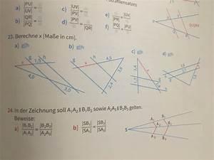 Strahlensätze Berechnen : strecke strahlensatz berechnen von streckenl ngen klasse 9 aufgabe 23 bitte mathelounge ~ Themetempest.com Abrechnung