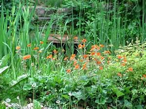 Kleine Gärten Gestalten Bilder : kleine g rten gestalten der gartenratgeber ~ Whattoseeinmadrid.com Haus und Dekorationen