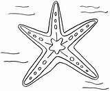Starfish Coloring Pages Drawing Line Getdrawings Designlooter Drawings Print 1005px 95kb 1200 Site sketch template