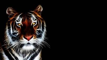 3d Animation Animated Tiger Wallpapertag