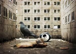 London Street Art & Graffiti Photography — Nicholas ...