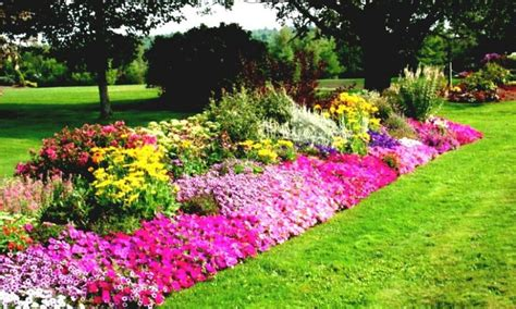 flower bed ideas for sun images of sunny perennial garden ideas landscaping gardening ideas