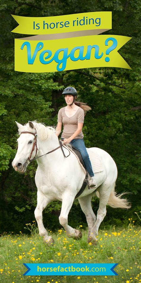 horse vegan riding english