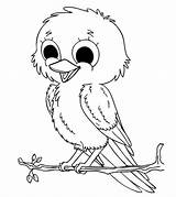 Coloring Bird Pages Printable sketch template