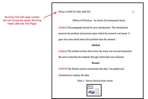 apa style paper template how to cite anything in apa format easybib