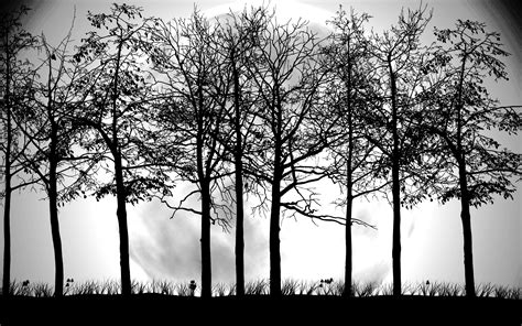 Tree Wallpaper Black And White PixelsTalk Net