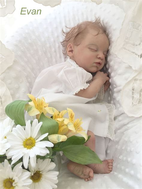 Apparently her niece has been staying with her for the summer. Pin by Nancy Dollar on Evangeline | Reborn babies, Reborn ...