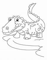 Coloring Alligator Pages Crocodile Print Baby Colouring Joyful Printable Template Colour Sheets Nursery Popular Animal Food Library Clipart Frightened Coloringhome sketch template