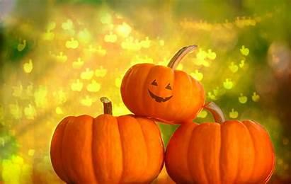 Pumpkin Backgrounds Halloween Background Desktop