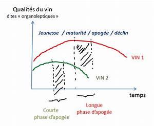 Comment distinguer un VIEUX VIN d'un vin TROP VIEUX, et déguster vos bouteilles au meilleur moment