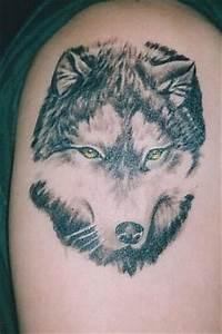 Loup Tatouage Signification : loup le tatouage sa signification et son histoire ~ Dallasstarsshop.com Idées de Décoration