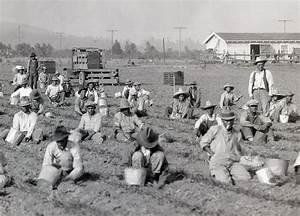 History of American Agriculture: Farm Machinery and Technology