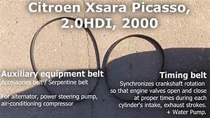 Auxiliary  U0026 Timing Belt  Xsara Picasso  2 0 Hdi