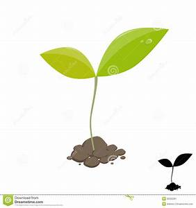 Sprouting Seed Clipart Little Plant Sprout Stock - Clipart ...