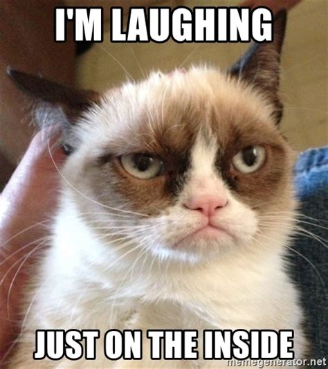 Laughing Cat Meme I M Laughing Just On The Inside Grumpy Cat 2 Meme