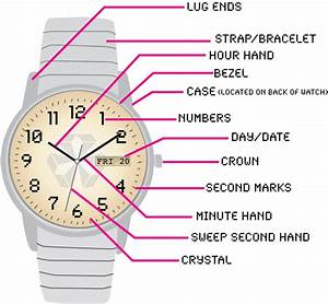 Wristwatch Diagram