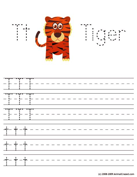 tt  tiger woo jr kids activities