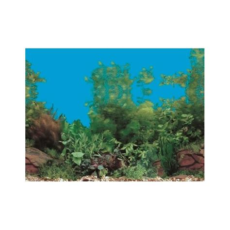 double sided fish tank background