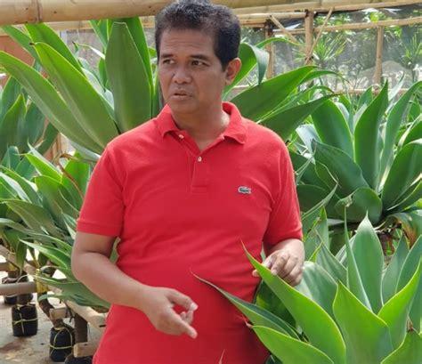 menggiurkan potensi ekspor tanaman hias monitor