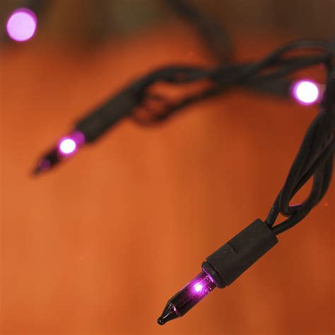 purple bulb and black cord string lights lighting