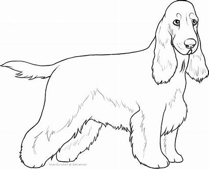 Spaniel Cocker English Line Lines Dog Lineart