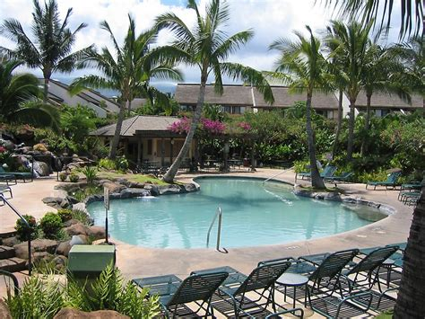 """an Exotic Swimming Pool In Maui In Hawaii"" By Dolphin"