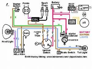 Shovelhead Wiring Diagram