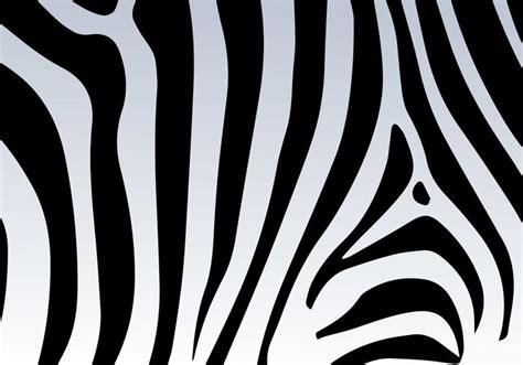 Zebra Print Background Zebra Print Vector Background Free Vector