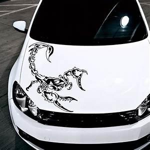 hood car scorpion dangerous predators symbol animals decor With automotive lettering decals