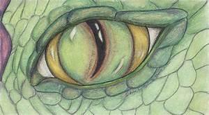 Dragon Eye by Jennifer Skalecke