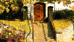 Autumn, Fall, Landscape, Nature, Tree, Forest, Leaf, Leaves, House, Door, Architecture