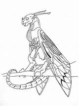 Wyvern Cicada Coloring Drawing Template Getdrawings Sketch sketch template