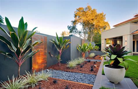 low maintenance plants outdoor outdoor low maintenance plants gallery