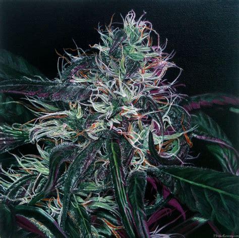Hiroko Reaney - Featured Marijuana Artist - Stoners Artwork